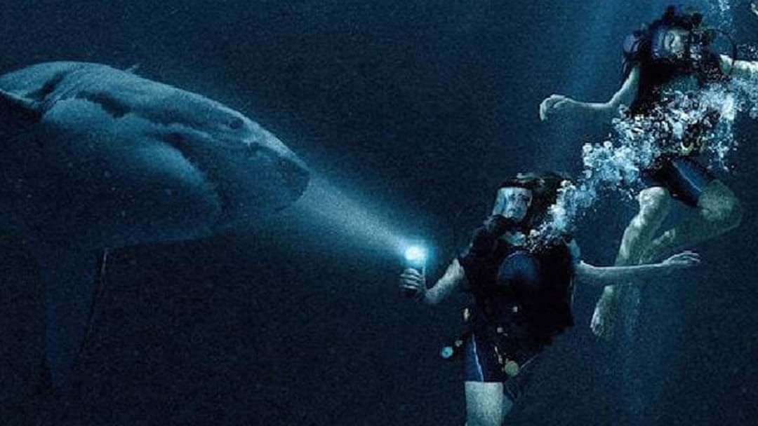 Article heading image for Sink Your Teeth Into The Terrifying Trailer For '47 Metres Down: Uncaged'
