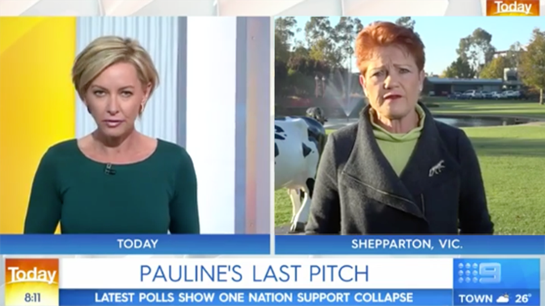 Article heading image for Pauline Hanson Savages Today Show Host Deborah Knight During Live Cross