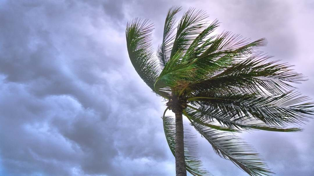Article heading image for Chance Of Storms For The Rest Of The Week In Townsville