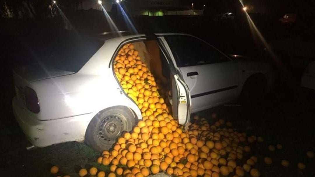 Article heading image for Five People Arrested For Allegedly Stealing 4 Tonnes Of Oranges