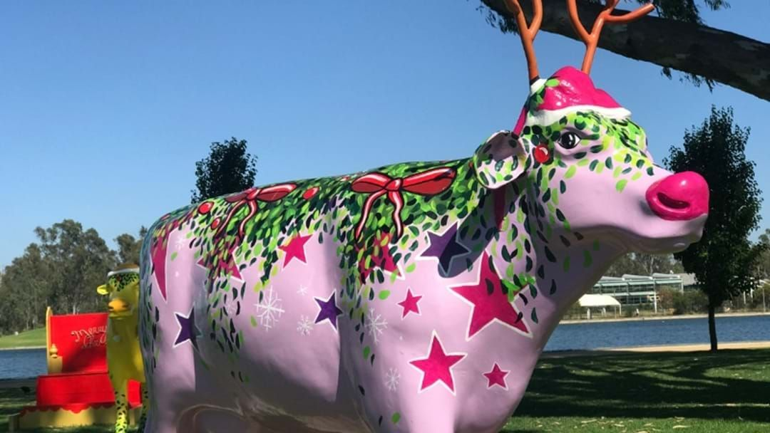 Article heading image for What Were Your Thoughts On The Greater Shepparton Festive Decorations?