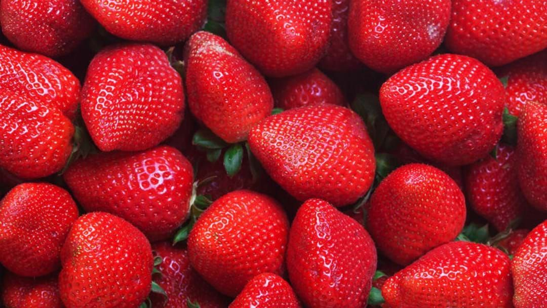 Article heading image for Suspected strawberry contamination in Hobart