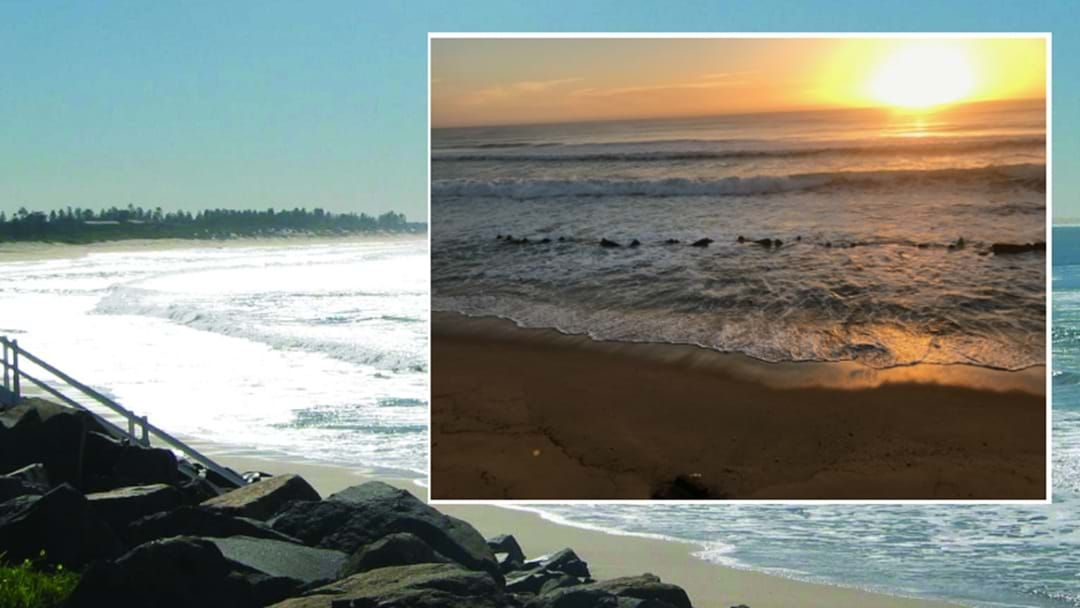 Article heading image for Council Issues Warning Over Stockton Beach Tank Traps