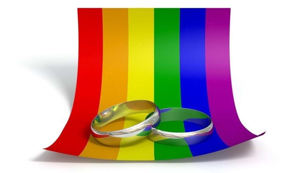 Article heading image for How Townsville Voted On Same Sex Marriage