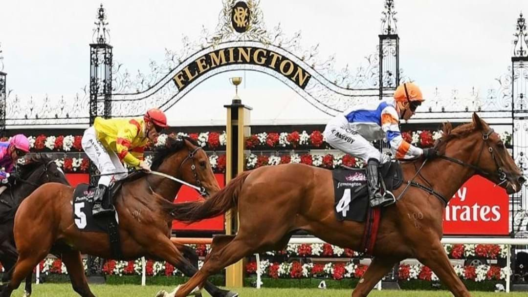 Article heading image for Victoria's Vaccine Economy Launches Regional Passport Trial And Melbourne Cup Crowds