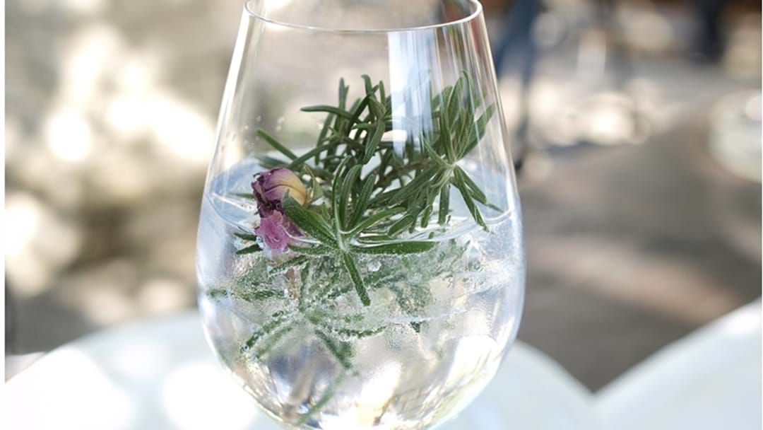 Article heading image for Gin Distillery Proposed for Toowoomba