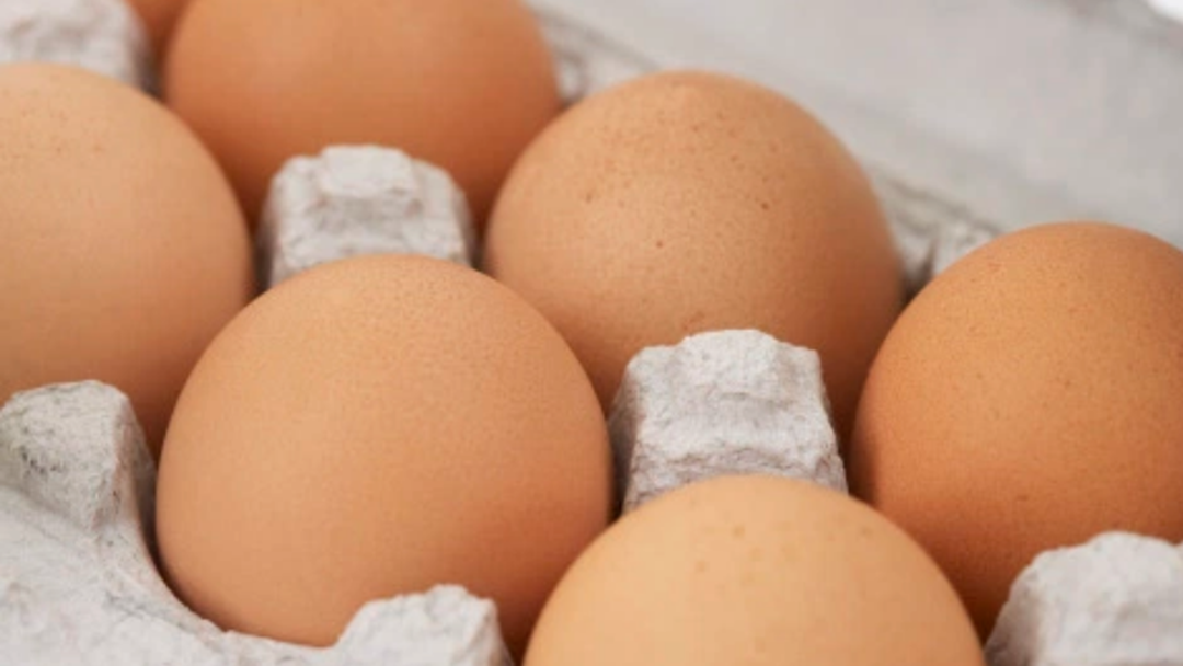 Article heading image for Why You Should Be Careful Disposing Of Eggs Affected By The Salmonella Recall