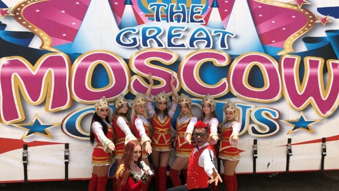 Article heading image for The Great Moscow Circus Will Return To The Gold Coast With A NEW Show In 2020!