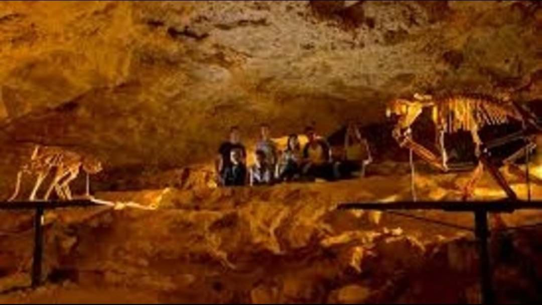 Article heading image for Naracoorte Caves now FREE for locals!