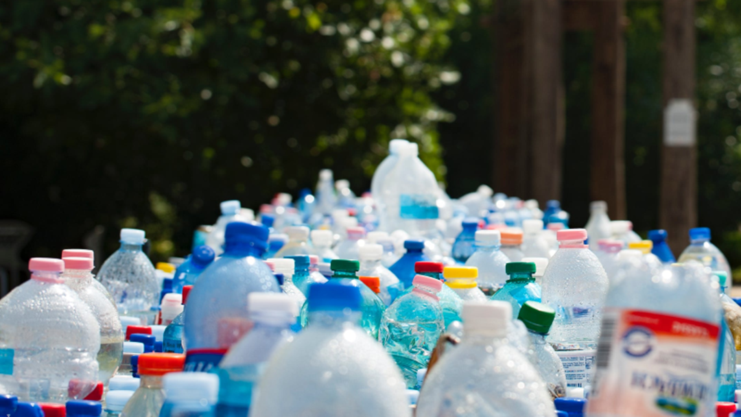 Article heading image for Have Your Say On Reducing Single-Use Plastics