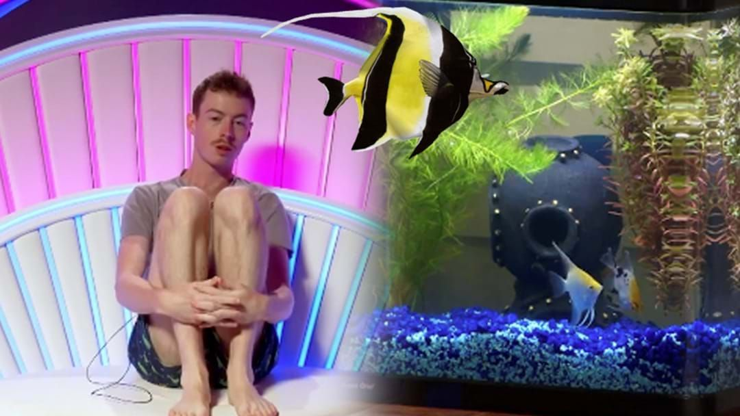 Article heading image for Ex Big Brother Housemate Has An Interesting Theory About Ian's Fish Naming!