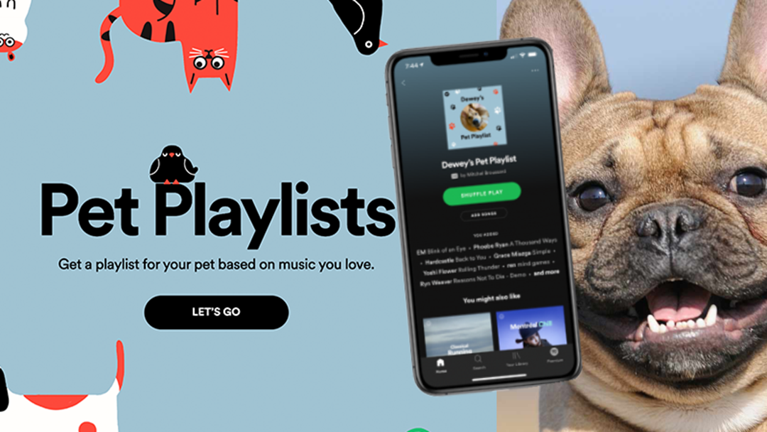 Article heading image for Spotify Will Now Make A Playlist For Your Pet!