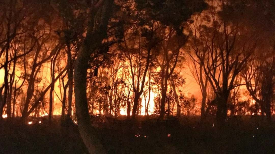 Article heading image for Queenslanders Are Being Urged To Start Prepping For Bushfire Season Now