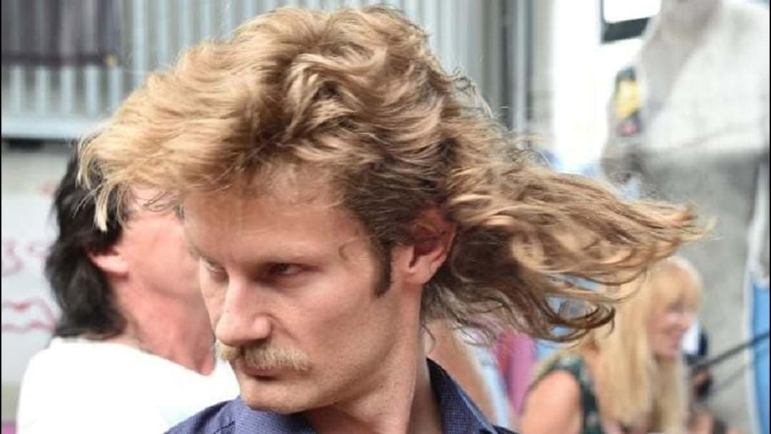 Article heading image for Evolution of the mullet