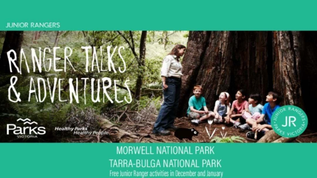 Article heading image for Your Kids Are Invited To Morwell National Park's Minibeast Discovery!