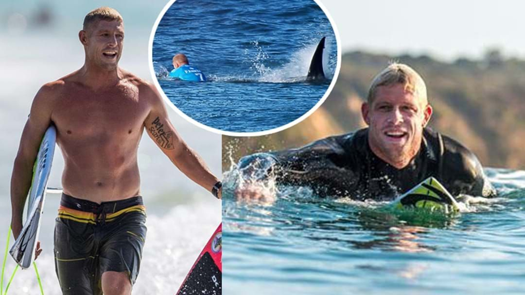 Article heading image for Mick Fanning Opens Up About His Shark Attack And Why He's Campaigning For Their Survival