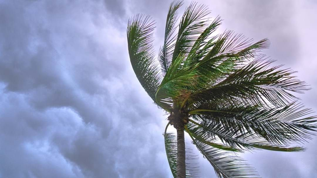 Article heading image for Cyclone & Story Safety Tips!