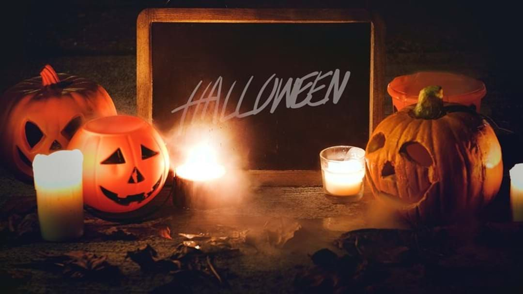 Article heading image for Halloween At Coal Creek