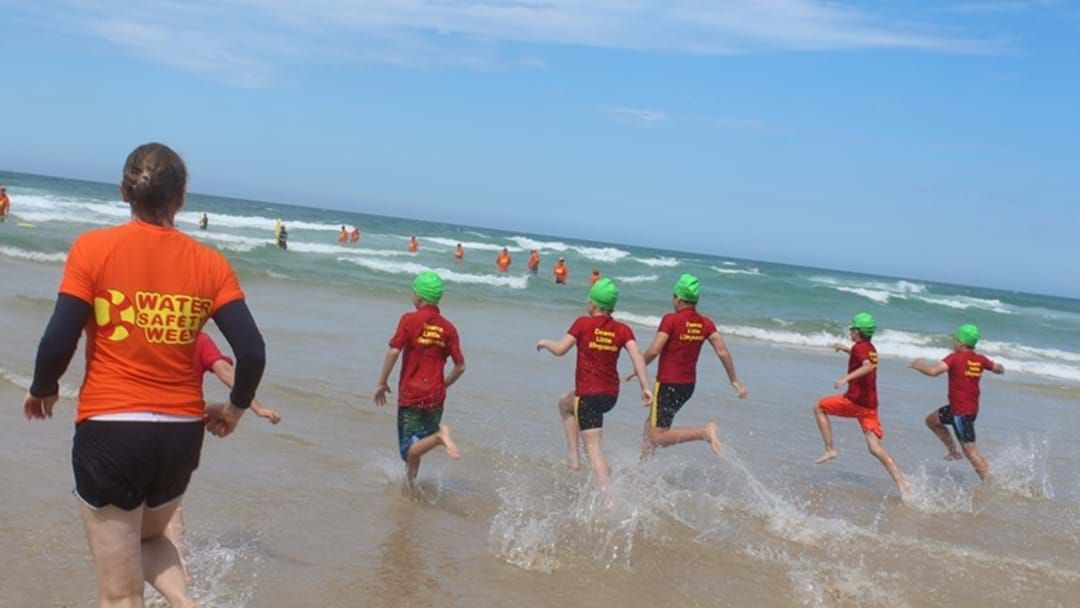 Article heading image for Award-winning Downs Little Lifeguards Education Days