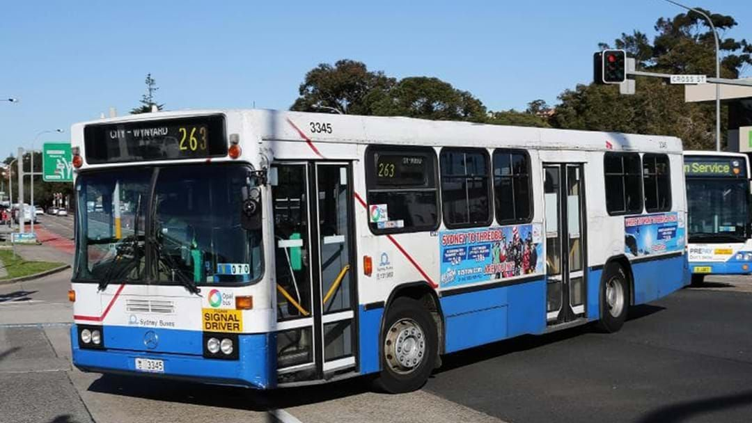 Article heading image for Buses Continue To Replace Trains On The Blue Mountains Line