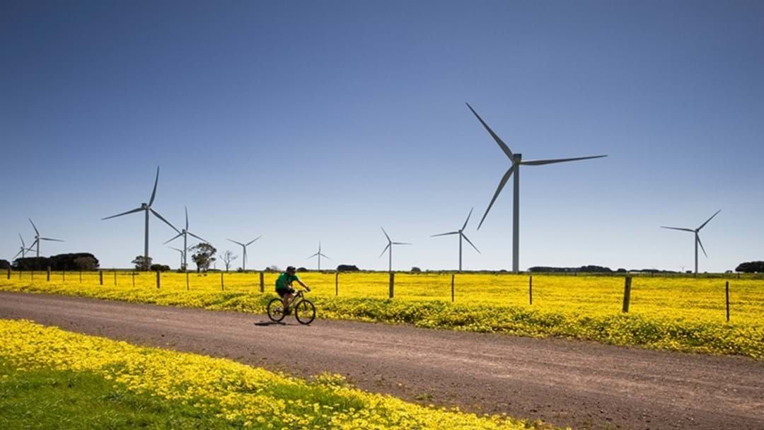 Article heading image for NAB Will Finance $370m Far North Wind Farm