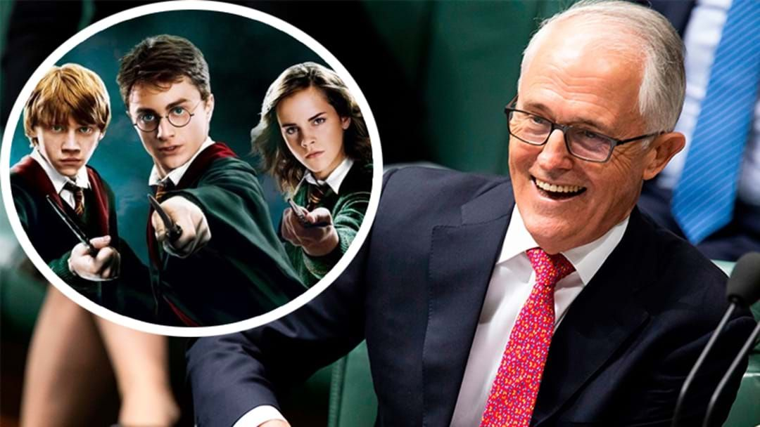 "Article heading image for Former PM Malcolm Turnbull Literally Just Admitted That ""Parliament Was Like Hogwarts"""