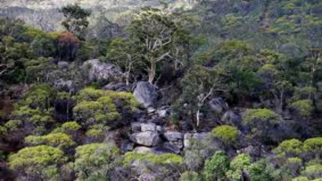 Article heading image for Avon Valley National Park CLOSED