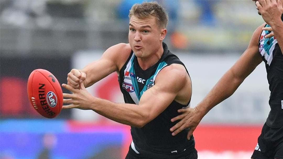 Article heading image for Port Adelaide Reveal Extent Of Ollie Wines' Shoulder Injury
