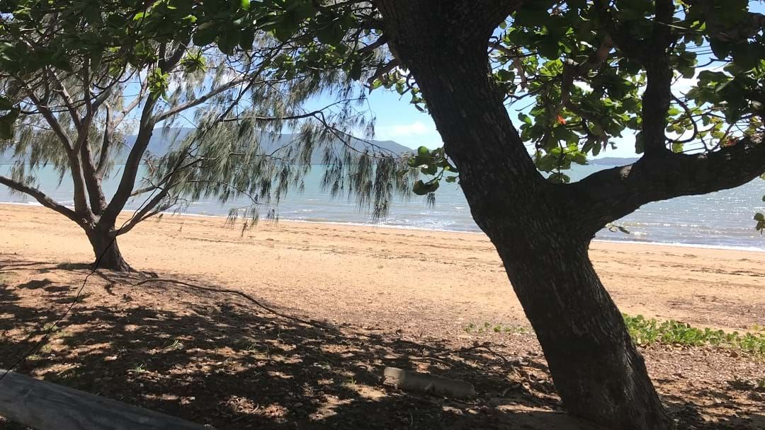 Article heading image for Maintaining Our Townsville Beaches After The Floods, What NOT To Do