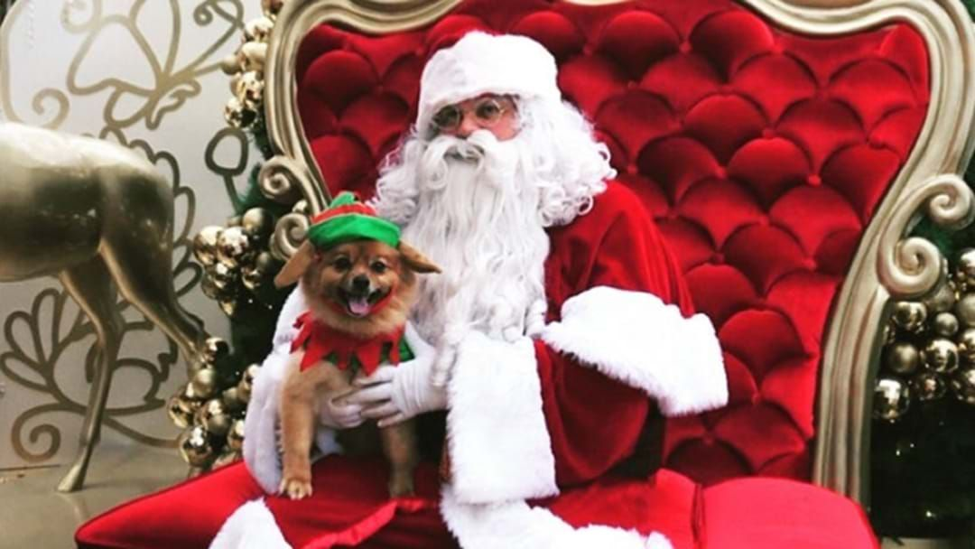 Article heading image for Plan Ahead, Here's How Your Santa Pics Will Change This Year