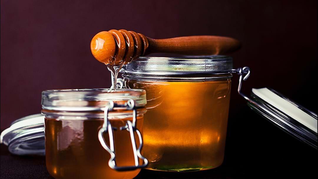 Article heading image for Queensland Honey Industry Eradicates Potentially Devastating Parasite