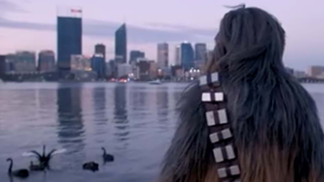 Article heading image for Chewbacca... Spotted In Perth?