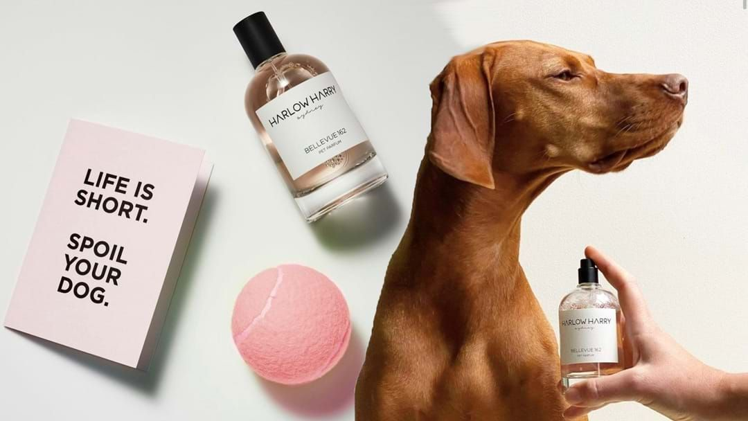 Article heading image for This Aussie Company Has Launched Perfume For Your Doggo