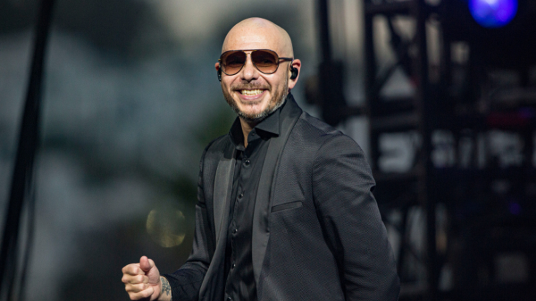 Article heading image for Umm Someone Edited Long Hair & A Beard On Pitbull & He Looks HOT AF