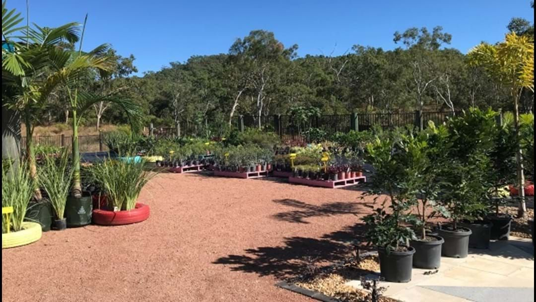 Article heading image for Don't Freak Out, But Now There's A Plant Nursery At Elliot Springs