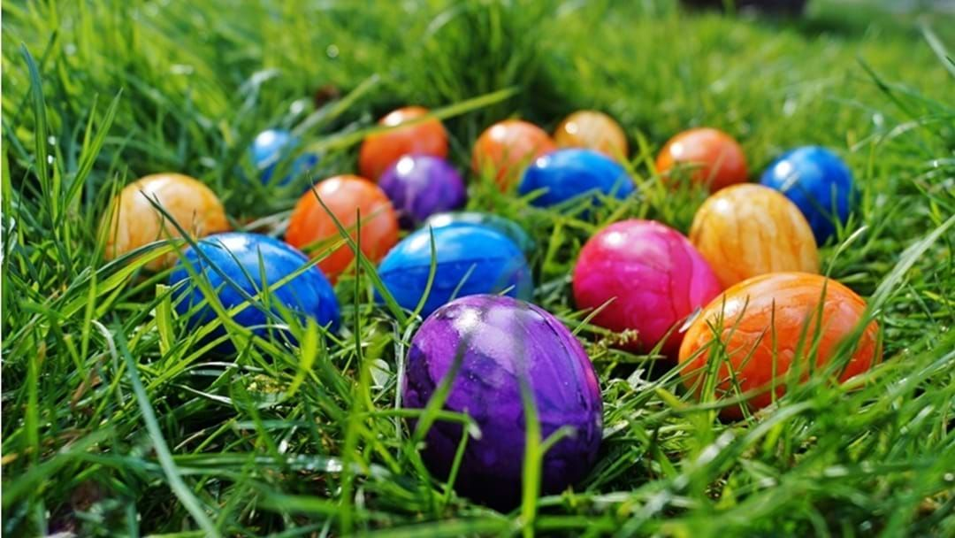 Article heading image for The Dalby Apex Easter Egg Hunt is ON!