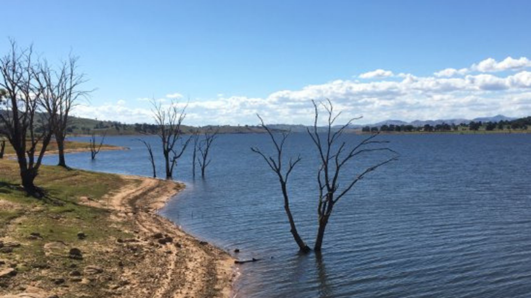 Article heading image for Lake Hume Clear Of Blue-Green Algae As Red Alert Lifted