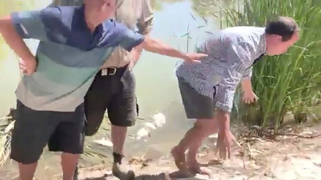 Article heading image for BEST OF 2019: When An Ex-Greens MP Became An Instant Meme After Nearly Spewing While Holding A Dead Fish