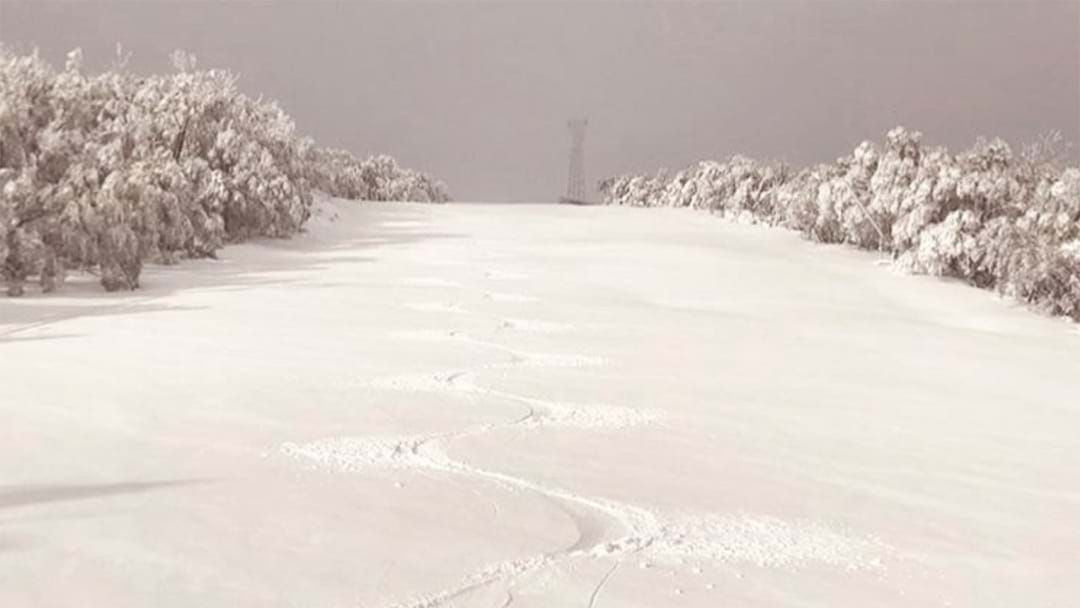 Article heading image for SNOW INCOMING: There Will Be Blizzards For Three Days Straight At Mt Buller