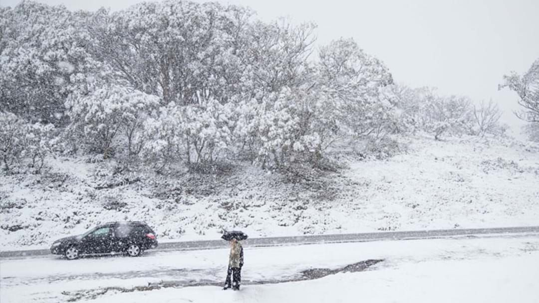Article heading image for SES Urge Caution Ahead of Cold Snap