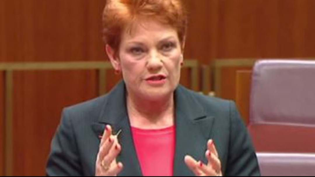 Article heading image for Pauline Hanson Has Been Banned From Twitter