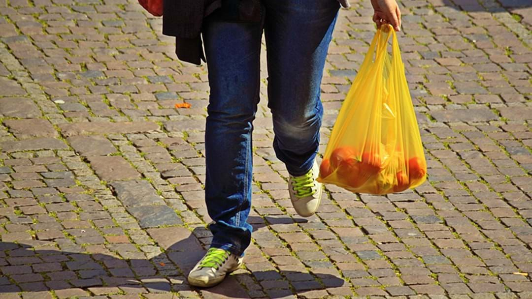 Article heading image for Should We Ban Plastic Bags In Victoria?