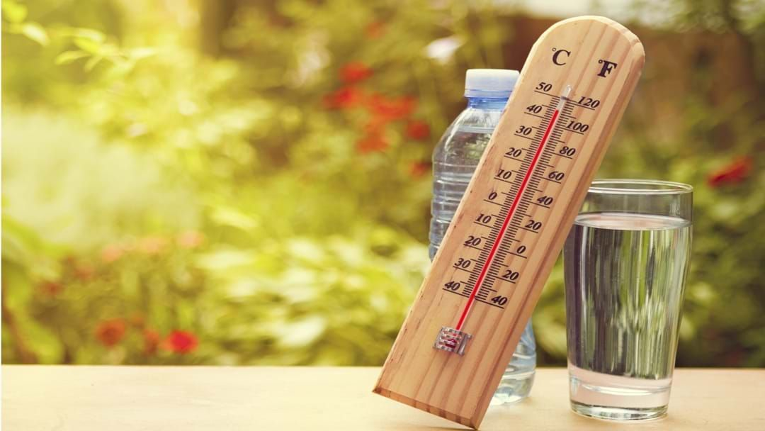 Article heading image for Above Average Temps Continue For Autumn