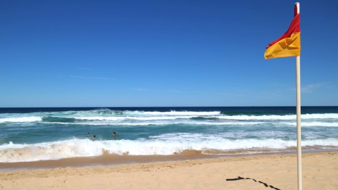 Article heading image for Search Resumes For Missing Swimmer Near Coffs Harbour