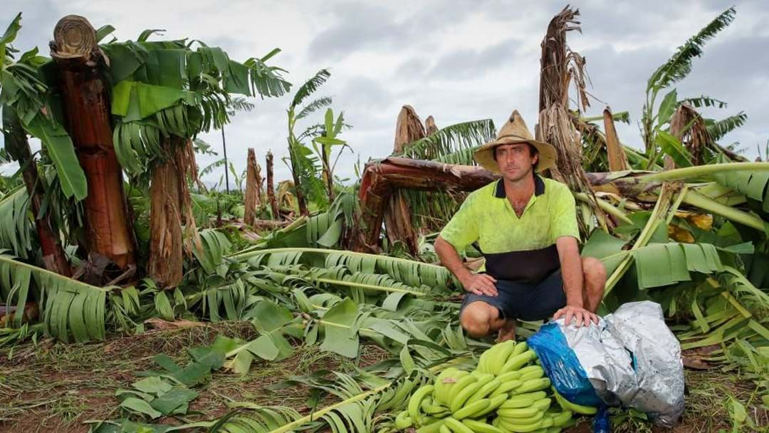 Article heading image for Queensland Health Create Wellbeing Program For Disaster-Impacted Areas