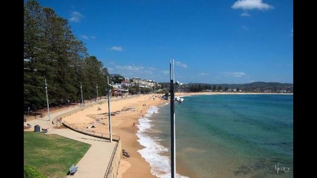 Article heading image for Poor Water Quality Sees Terrigal Beach Closed Until Further Notice