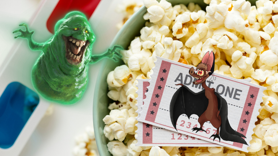 Article heading image for All The Free Movies You Can Watch at Burleigh Heads Outdoor Cinema