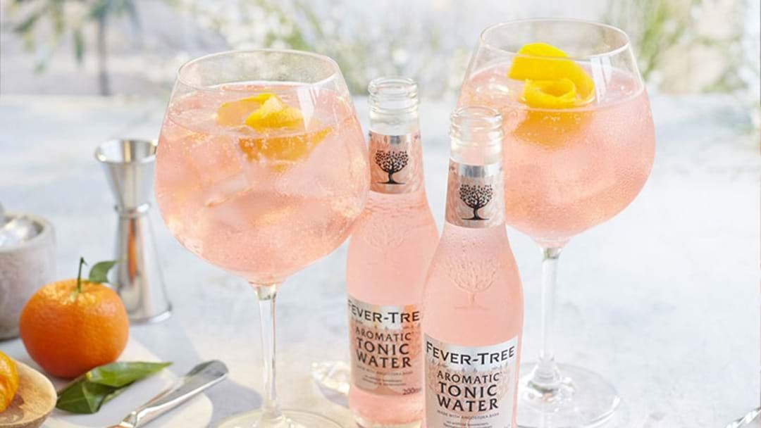 Article heading image for Drinks Up: A Massive Virtual G&T Festival Is Happening Next Month