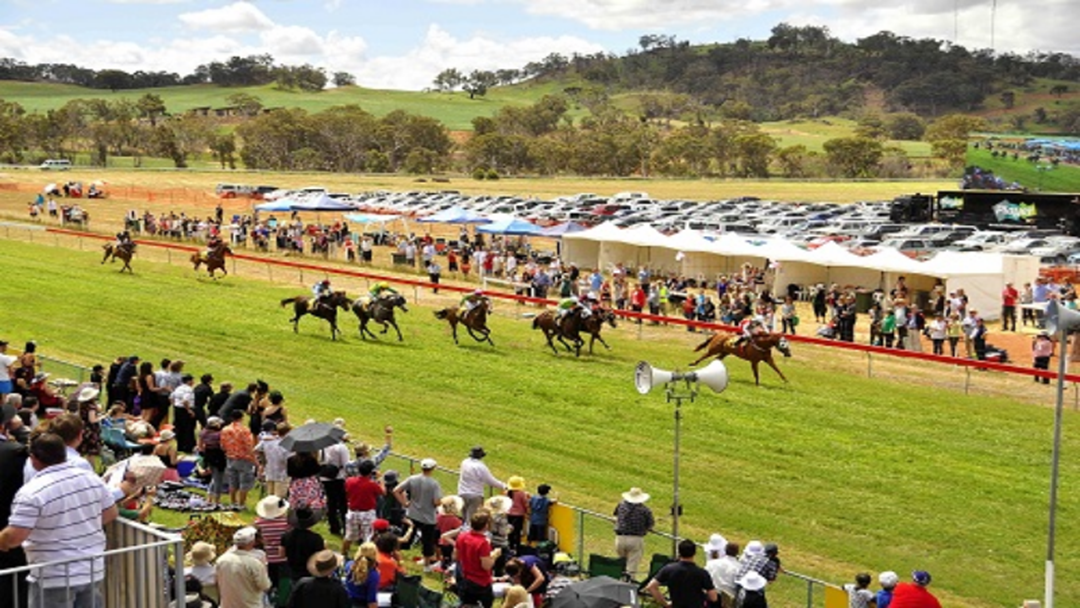 Article heading image for Toodyay Picnic Races