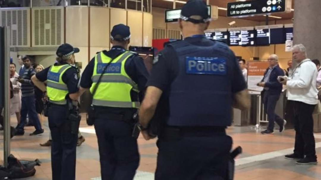 Article heading image for Busker Doing 'Breathing Exercises', Carrying Instrument Bag Causes Flagstaff Station Shut Down